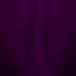 La petite mort - the clit app